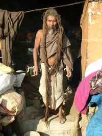 Long Hiared Sadhu