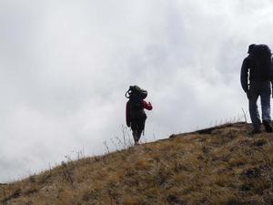 Trail Ghorepani to Tadapani
