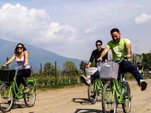 Cousiño Macul Bike & Wine Tour Photos