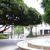 Plaza Min