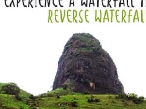 Reverse Waterfall Trek to Anjaneri Photos