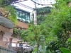 Rainforest Precinct Of 1 Utama Shopping Mall
