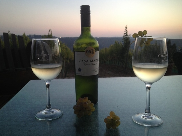 Premium Wine Tour with Lunch & Wine Pairing Photos