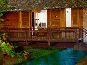 Exotic Wayanad Honeymoon Tours Photos