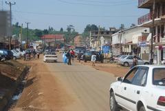 Bushenyi