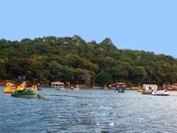 Olive Resort Khindsi - Nagpur District