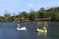 Olive Resort Khindsi  - View