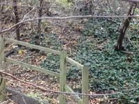 Brookmill Road Local Nature Reserve