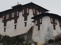 Bhutan Raven Nest Tours & Treks