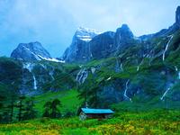 Eastern Himalayan Alpine Shrub and Meadows
