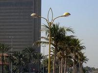 Deira Corniche