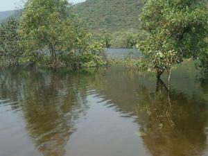 Kambalakonda Wildlife Sanctuary