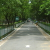 A Walkway At The Zoological Gardens