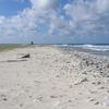 Birnie Island Beach