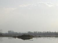 Khushal Sar