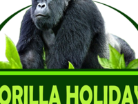 Gorilla Holidays (U) Ltd