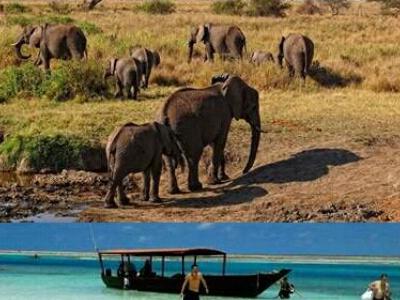 Wild Exploration And Beach Tour