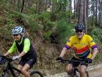Cycling Rentals