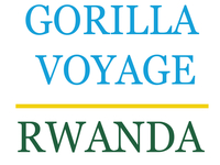 Gorilla Voyage Rwanda