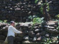 Long Wall of Quang Ngai