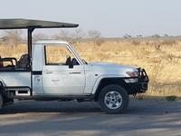 Kgato Safaris