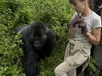 Terrain Safaris Uganda