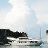 Halong Promotion Tours