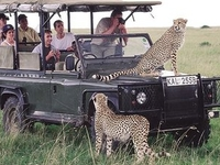 Kilimanjaro Safari Holidays Co Ltd