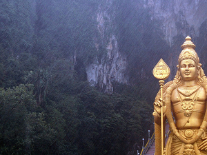Batu Caves, Elephant Sanctuary, Silver Leaf Monkeys, Firefly Tour Photos