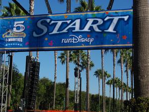 5-Day Disneyland Resort Ticket Photos