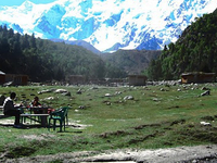 Fairy Meadows Tour, Nanga Parbat Base Camp Trek Photos