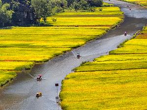 Hoa Lu Tam Coc ( 1 day tour ) Photos