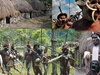 Papua Adventure Tours & Travel, Ltd