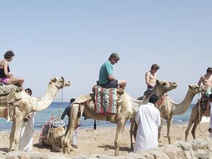 Welcome To Egypt Photos