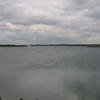 Abberton Reservoir