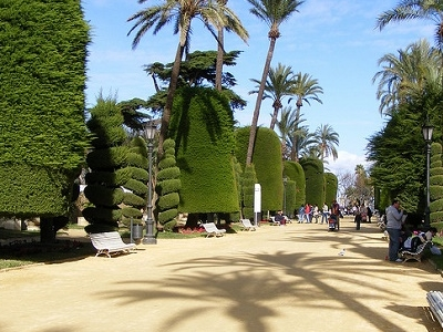A City Park View In Cadiz - Andalusia Spain