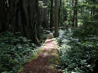 Ah-Pah Interpretive Trail
