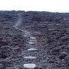 Ala Kahakai National Historical Trail