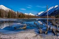 Alaskan Wilderness - Seward Highway - Anchorage