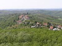 Alsó-Forest