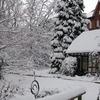Alter Botanischer Garten Kiel Winter
