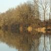 Alter Rhein