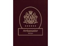 Ambassador Vienna