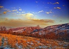 Appalachian National Scenic Trail -