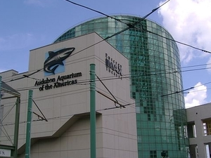 Aquarium of the Americas