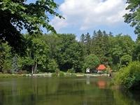 Arboretum in Zirc