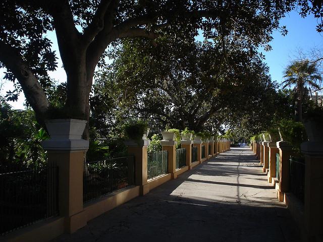 Argotti Botanical Gardens Malta Photos