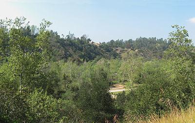 Arroyo Seco  California