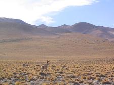 Atacama Desert Near San Pedro