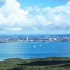 Auckland City From Rangitoto Mountain Top